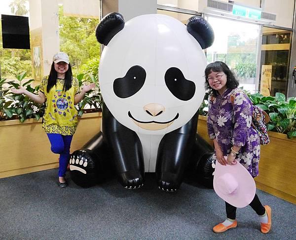 36-酸酸媽媽台北3日遊(台北木柵動物園)