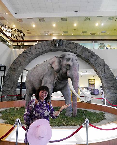 37-酸酸媽媽台北3日遊(台北木柵動物園)