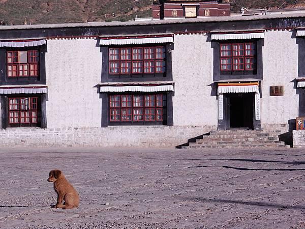 09-西藏扎什倫布寺