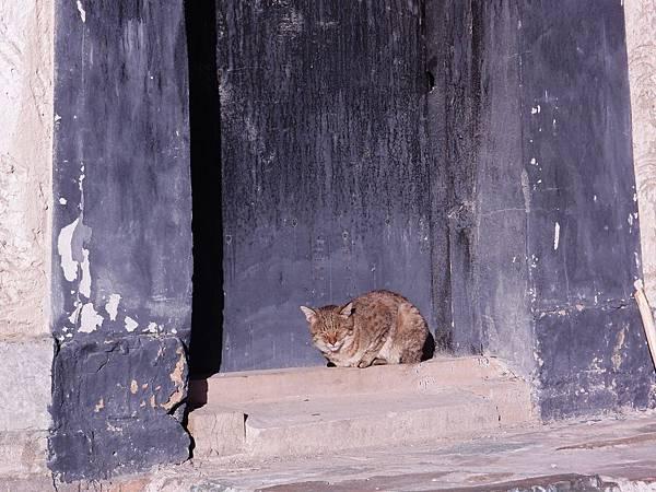 14-西藏扎什倫布寺