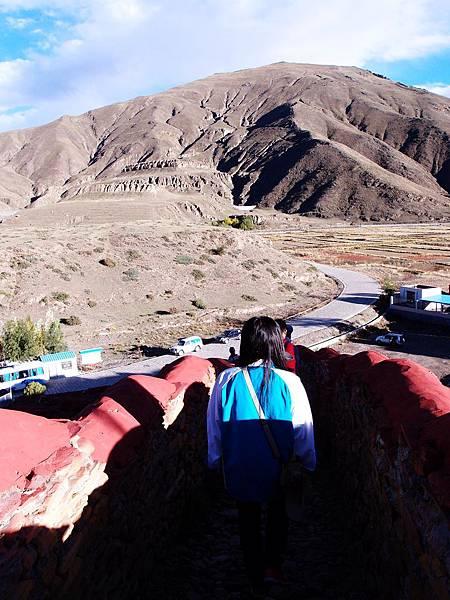 16-西藏 藏王墓