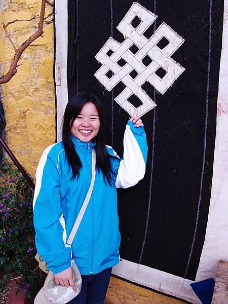 29-西藏 藏王墓