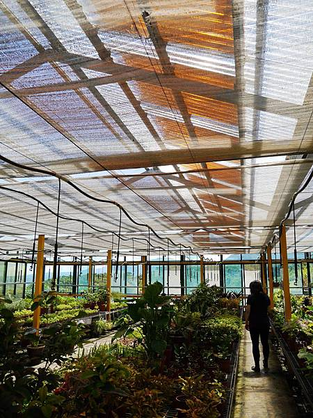 26-八里掩埋場 溫室玻璃屋