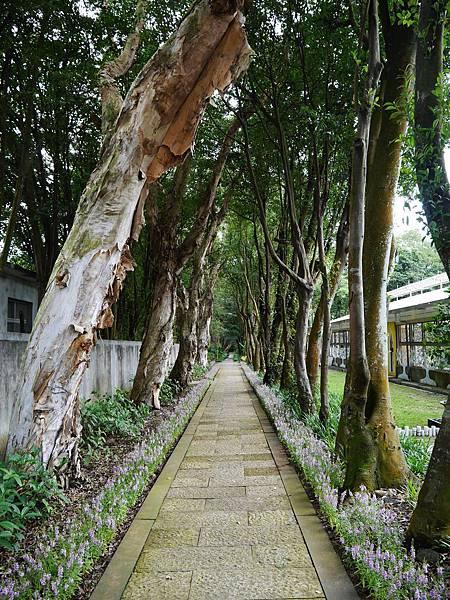 11-台北市花卉試驗中心(陽明山)