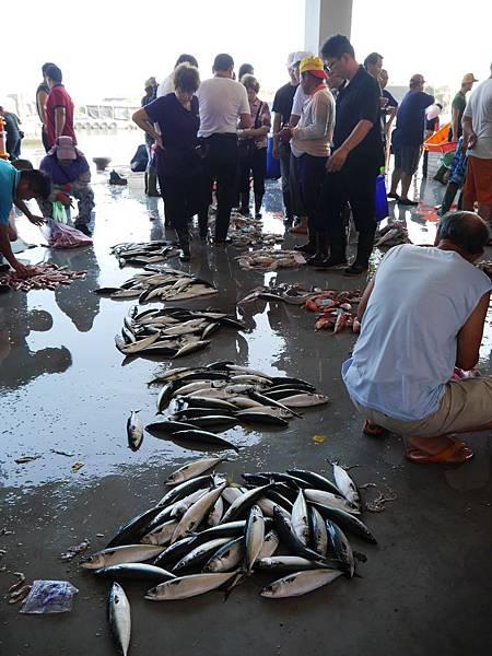 73-大溪漁港
