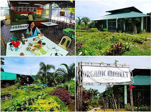 53-菲律賓Bacolod Summit民宿型遊學語言中心.jpg