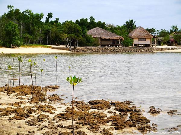 82-Coral Bay Beach and Dive Resort.JPG