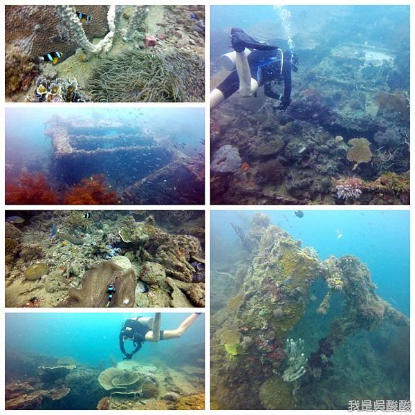 062-Coral Bay Beach And Dive Resort珊瑚灣海灘飯店 潛水.jpg
