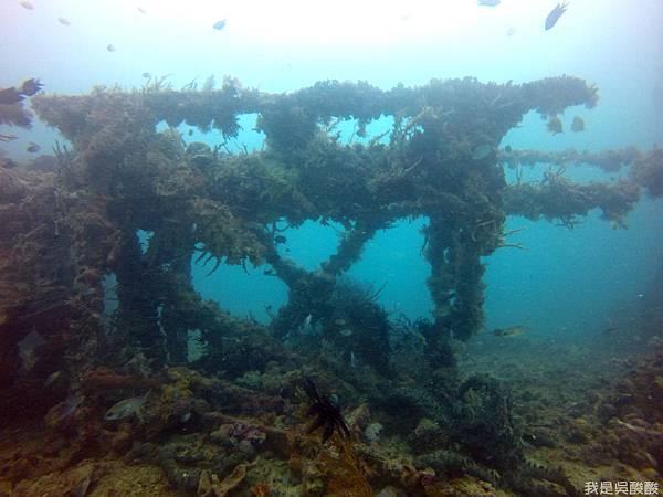 063-Coral Bay Beach And Dive Resort珊瑚灣海灘飯店 潛水.JPG