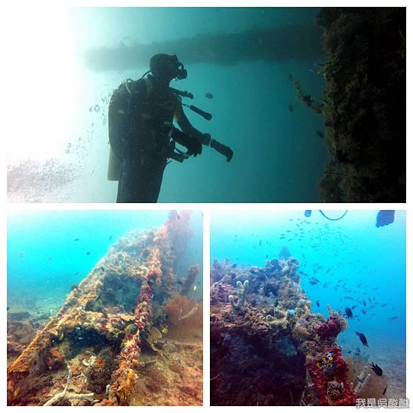 064-Coral Bay Beach And Dive Resort珊瑚灣海灘飯店 潛水.jpg