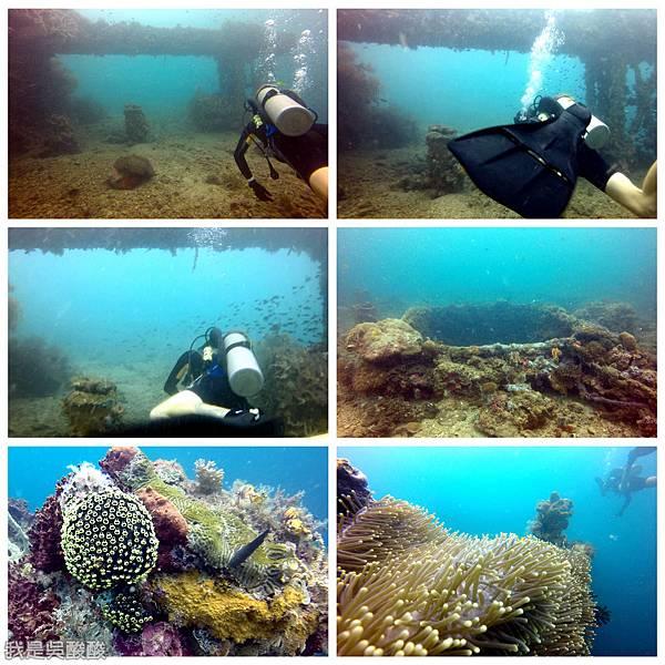 072-Coral Bay Beach And Dive Resort珊瑚灣海灘飯店 潛水.jpg