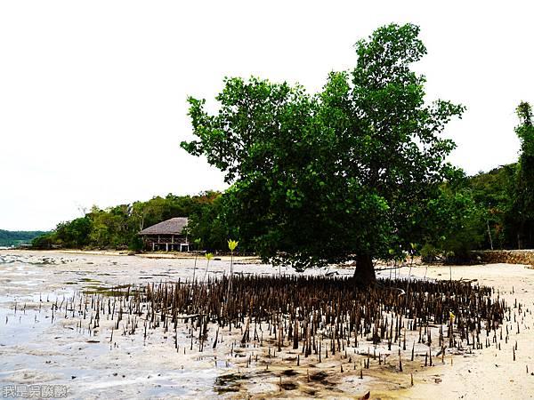 003-Coron Coral Bay Beach And Dive Resort.JPG