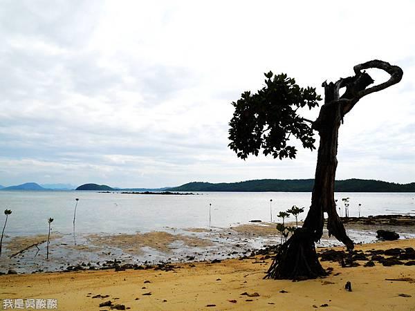 009-Coron Coral Bay Beach And Dive Resort.JPG