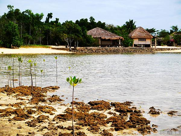 011-Coron Coral Bay Beach And Dive Resort.JPG