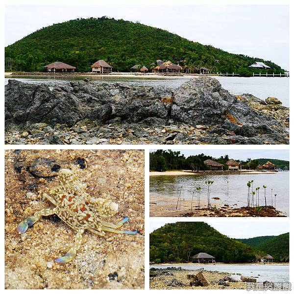 012-Coron Coral Bay Beach And Dive Resort.jpg