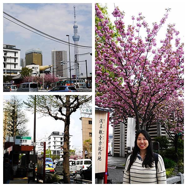 022-酸酸東京+京都 7日自助旅行.jpg