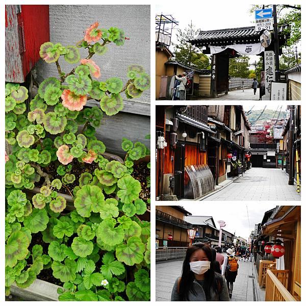 133-酸酸東京+京都 7日自助旅行.jpg