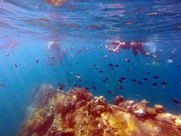 05-Lusong Gunboat Shipwreck沈船CORON-Tour G.JPG