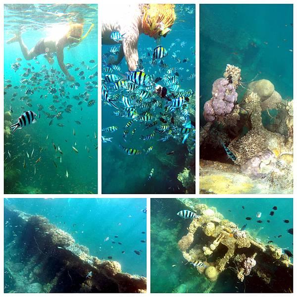 14-Lusong Gunboat Shipwreck沈船CORON-Tour G.jpg