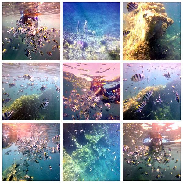 16-Lusong Gunboat Shipwreck沈船CORON-Tour G.jpg