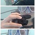 09-薄荷島 Bohol Shores 酸酸.jpg