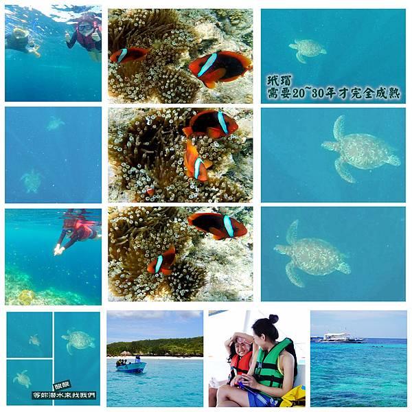 01-1-菲律賓巴里卡薩大斷層浮潛 酸酸.jpg