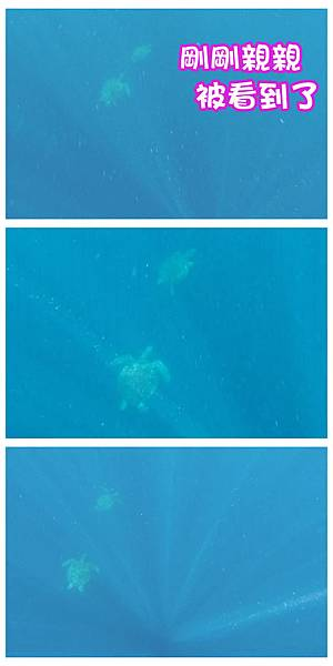 17-巴里卡薩大斷層浮潛 酸酸.jpg