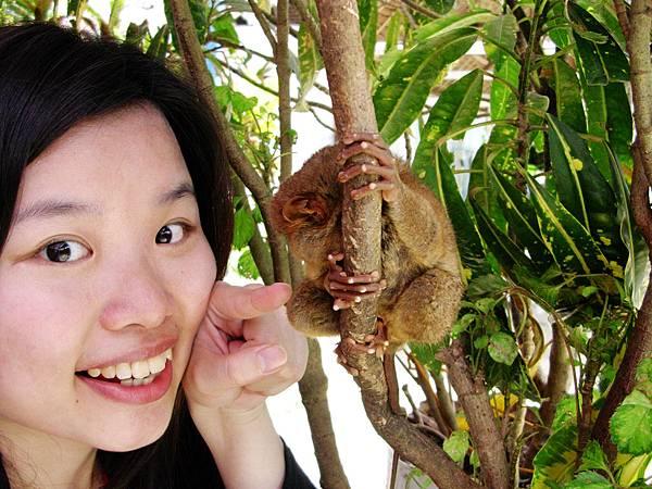 11-薄荷島眼鏡猴(酸酸2006年拍攝).JPG