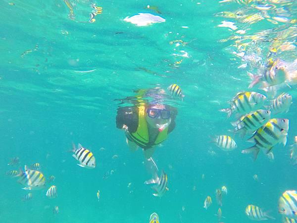 20-宿霧加勒比海島餐廳浮潛、釣魚.JPG
