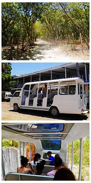 02-Orlango Wildlife Sanctuary Safari Tour野生保護區.JPG