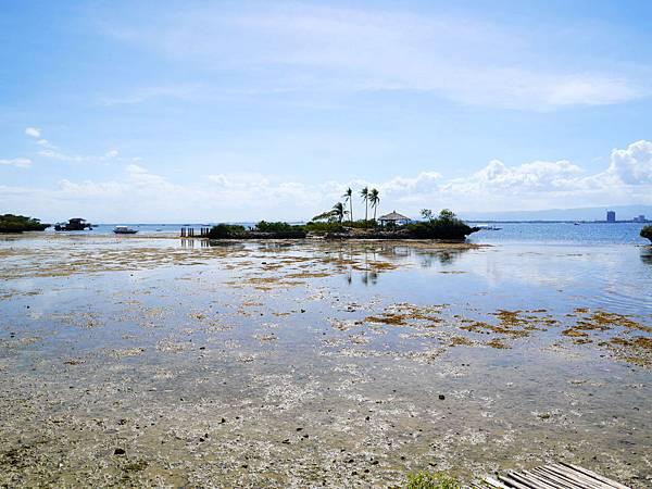 16-宿霧 吳酸酸Orlango Island.JPG