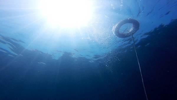 07-酸酸學潛水2016年6月.jpg