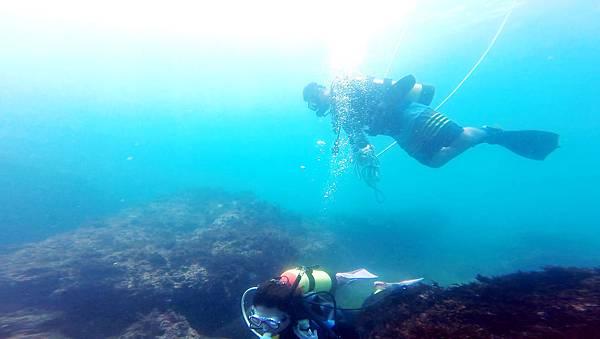 11-酸酸學潛水2016年6月.jpg