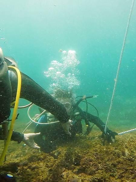 08-酸酸學潛水2016年6月.jpg
