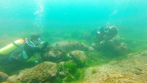 12-酸酸學潛水2016年6月.jpg