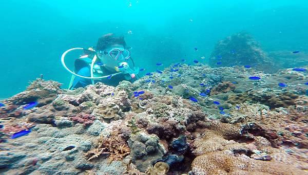 15-酸酸學潛水2016年6月.jpg