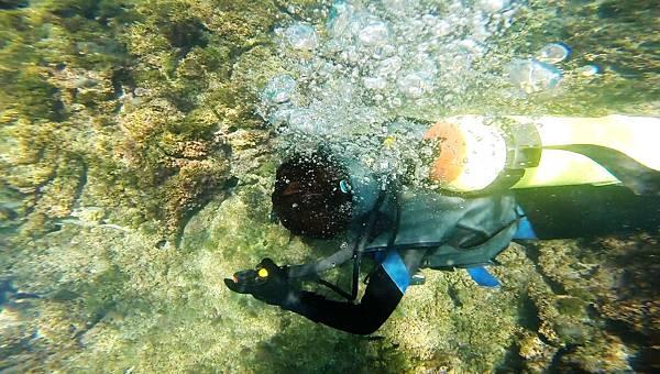 29-酸酸學潛水2016年6月.jpg