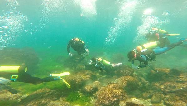30-酸酸學潛水2016年6月.jpg