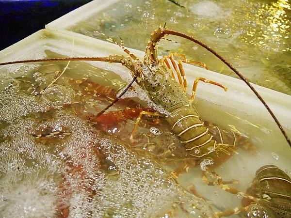 04-Rawai Beach seafood拉威沙灘海鮮.JPG