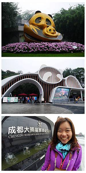 03-四川好好玩之成都的探險記 大熊貓基地.jpg