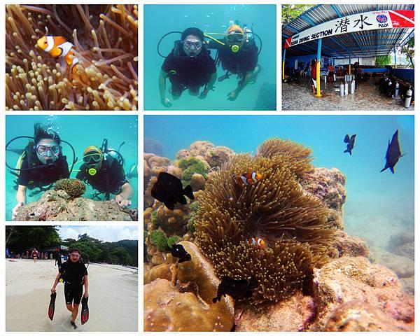 01-普吉島 珊瑚島潛水.jpg