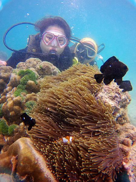 35-普吉島 珊瑚島潛水吳酸酸.JPG