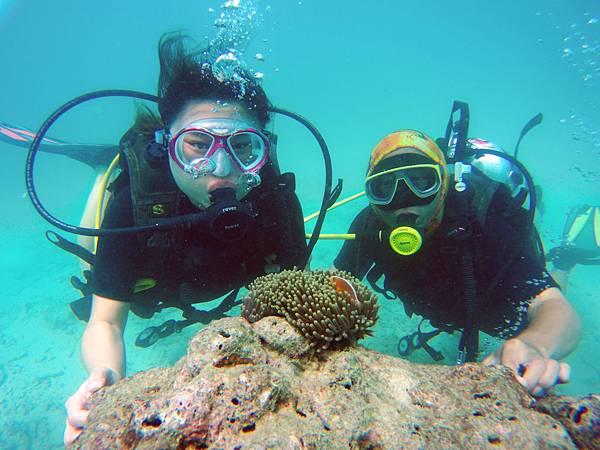 34-普吉島 珊瑚島潛水吳酸酸.JPG