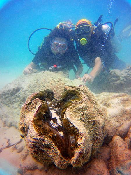 37-普吉島 珊瑚島潛水吳酸酸.JPG