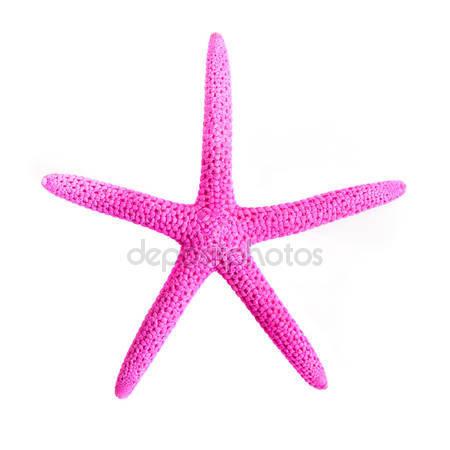 pink-starfish.jpg