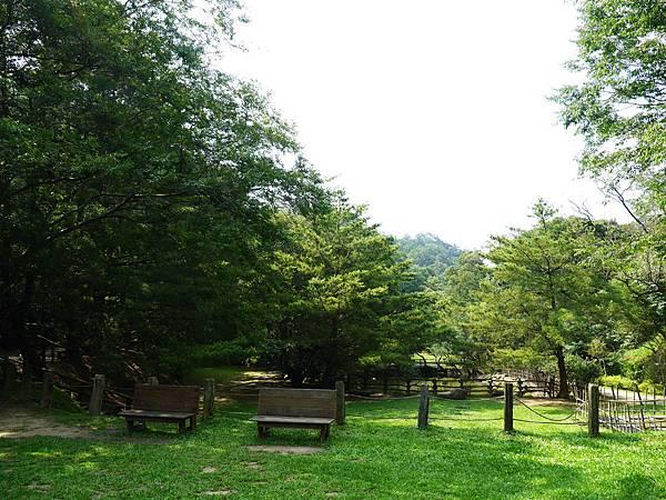 04-苗栗 綠葉方舟.JPG