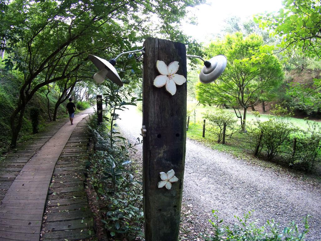 59-苗栗 綠葉方舟.JPG