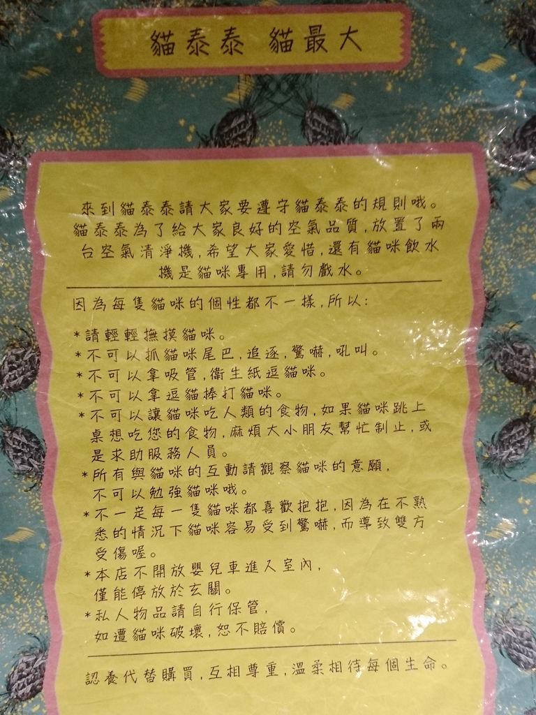 37-林口貓泰泰.JPG