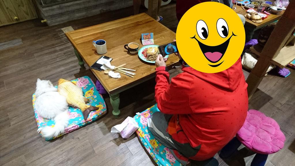 43-林口貓泰泰.JPG