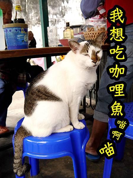 17-泰國普吉島 跟著計程車司機吃美食 吳酸酸.JPG